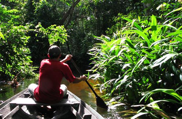 amazonie-excursion-bateau-foret.jpg