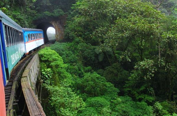 Train, Curitiba - © Cesar L. Martins