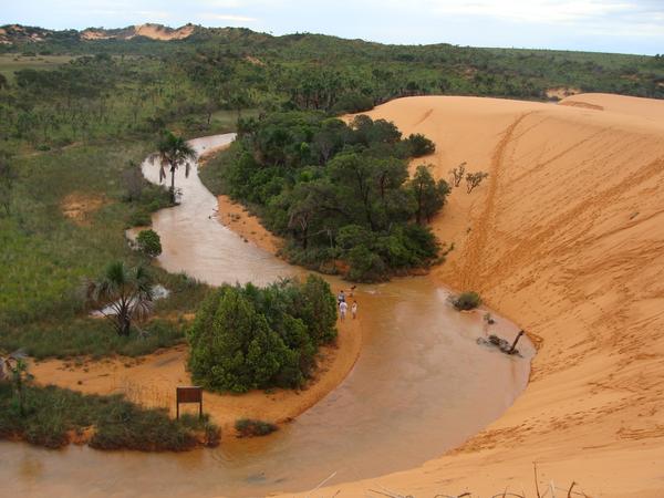 jalapao-dune-riviere_2018-08-27.JPG