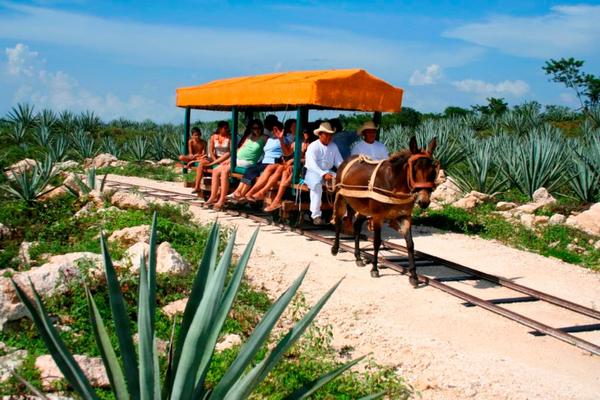 hacienda-sotuta-de-peon-yucatan-mexique-3.jpg