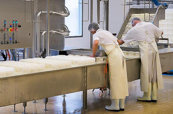 visite-d-une-fromagerie-artisanale-du-pays-nantais-web.jpg