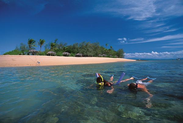 Snorkelling Low Islands
