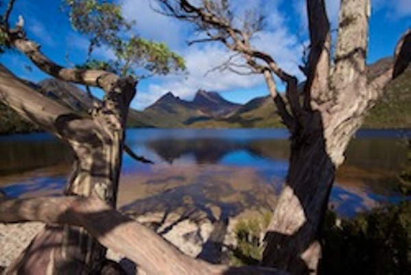 Lac dans les Cradle Mountains