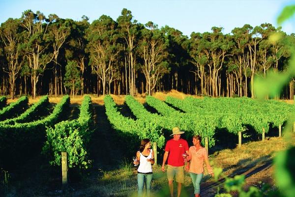 wine20margaret-river-wine-region.jpg