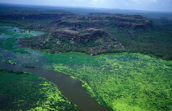 australie-davidsons-arnhemland-safaris-mt-borradaile-aerial.jpg