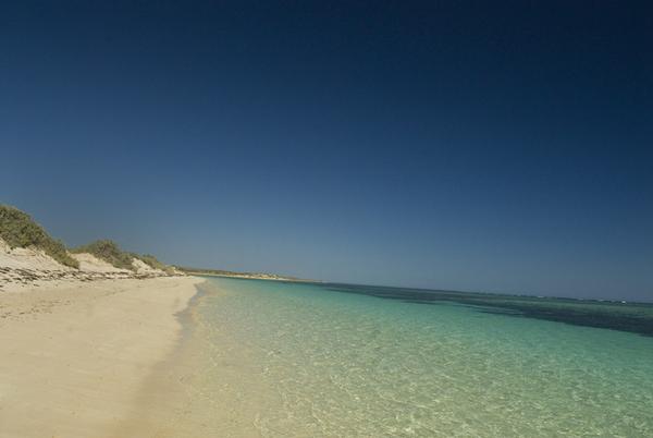 australie-exmouth-sal-salis-ningaloo-reef-beach.jpg