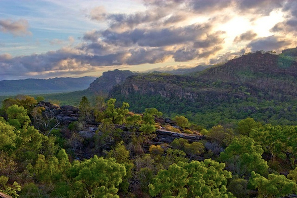 kakadu-national-park-northern-territory-australia.jpg