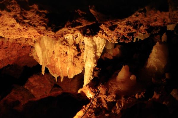 ngilgi-caves.jpg