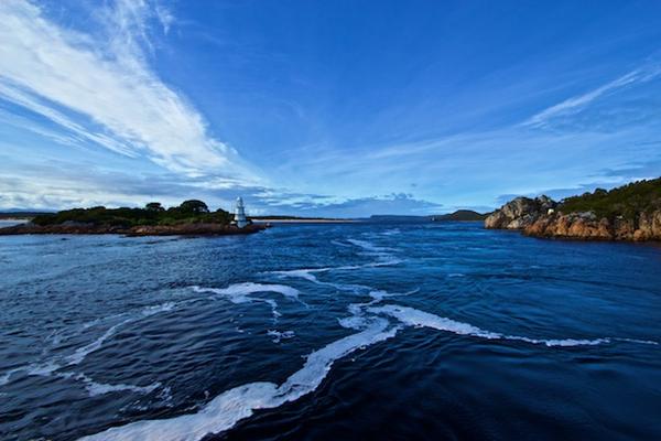 tasmanie_gordon_river_cruise2071.jpg