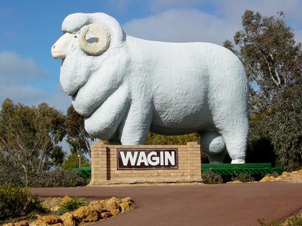 wagin-ram20giant.jpg
