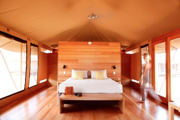 safari_tent-interior20large.jpg